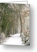 Walk Way Photo Greeting Cards - Winter Journey Greeting Card by Andy Smy