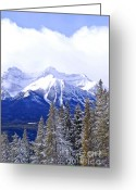 Cover Greeting Cards - Winter mountains Greeting Card by Elena Elisseeva