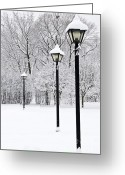 Pathway Greeting Cards - Winter park Greeting Card by Elena Elisseeva