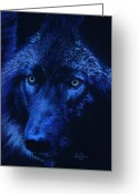 Wolves Pastel Greeting Cards - Wolf in moonlight version D Greeting Card by John  Palmer
