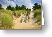 Ocean Path Greeting Cards - Wooden stairs over dunes at beach Greeting Card by Elena Elisseeva