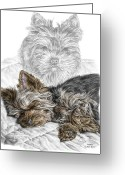 Canine Art Greeting Cards - Yorkie - Yorkshire Terrier Dog Print Greeting Card by Kelli Swan