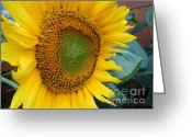 Lam Lam Greeting Cards - You Are My Sunshine Greeting Card by Lam Lam