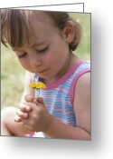 Holding Flower Greeting Cards - Young Girl With A Flower Greeting Card by Ian Boddy