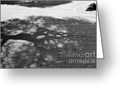Buddhist Temple Greeting Cards - Zen Garden Abstract Greeting Card by Dean Harte