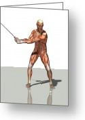 Backswing Greeting Cards - Male Muscles, Artwork Greeting Card by Friedrich Saurer