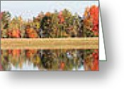 Beauty Mark Greeting Cards - 10022012 060 Greeting Card by Mark J Seefeldt