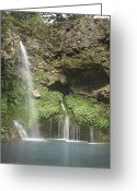 Waterfall Greeting Cards - 1004-1915 Natural Falls State Park 2 Greeting Card by Randy Forrester