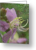 Telstar Greeting Cards - In Bloom Collections Greeting Card by Chye Kwang Yan