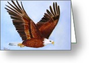 Original Ceramics Greeting Cards - 1149b  Bold Eagle 3 Greeting Card by Wilma Manhardt