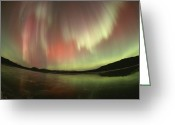 Fisheye Greeting Cards - A Brilliant Display Of Aurorae Greeting Card by Paul Nicklen