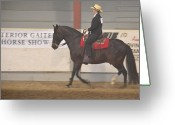 Gaited  Horse Greeting Cards - 14th Annual Gaited Horse Show Greeting Card by Todd Greening
