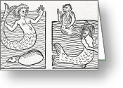 Mermaid Print Greeting Cards - 15th Century German Woodcut Print Greeting Card by Cci Archives