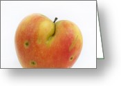 Rosaceae Greeting Cards - Apple Greeting Card by Bernard Jaubert