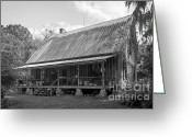 Foundations Greeting Cards - 1850s Florida Cracker Farmhouse Greeting Card by Lynn Palmer