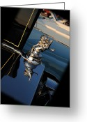 Mascots Greeting Cards - 1928 Franklin Sedan Hood Ornament Greeting Card by Paul Ward