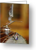 Car Mascot Greeting Cards - 1931 LaSalle Hood Ornament Greeting Card by Jill Reger