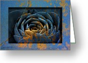 Texture Flower Photo Greeting Cards - 1936 Greeting Card by Peter Holme III