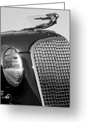 Stock Photography Greeting Cards - 1937 Cadillac V8 Hood Ornament 3 Greeting Card by Jill Reger
