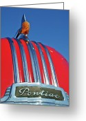 Mascots Greeting Cards - 1951 Pontiac Chief Hood Ornament 2 Greeting Card by Jill Reger