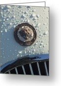 Sports Car Photo Greeting Cards - 1954 Jaguar XK120 Roadster Hood Emblem Greeting Card by Jill Reger
