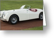 Sports Car Photo Greeting Cards - 1954 Jaguar XK120 Roadster  Greeting Card by Jill Reger