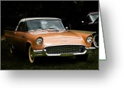 Grass Pyrography Greeting Cards - 1957 Thunderbird Greeting Card by Patricia Stalter
