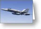 Fighter Jets Greeting Cards - A Cf-188a Hornet Of The Royal Canadian Greeting Card by Gert Kromhout