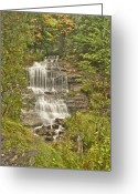 Autumn Photographs Greeting Cards - Alger Falls Greeting Card by Michael Peychich