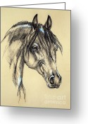 Horse Portrait Pastels Greeting Cards - Arabian horse sketch Greeting Card by Angel  Tarantella