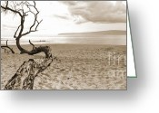 Sepia Greeting Cards - Big Beach Maui Hawaii Greeting Card by Dustin K Ryan