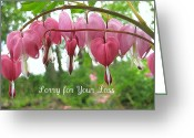 Card Greeting Cards - Bleeding Heart Melody Greeting Card by Shirley Sirois