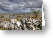 Barren Limestone Greeting Cards - Burren Wall Greeting Card by John Quinn