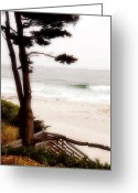 White Sand Greeting Cards - Carmel Treat Greeting Card by Ron Regalado