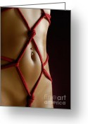Piercing Greeting Cards - Closeup of a Stomach with Decorative Rope Bondage Shibari Greeting Card by Oleksiy Maksymenko