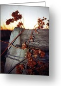 Rural Decay Prints Greeting Cards - Corner Greeting Card by Larysa Luciw