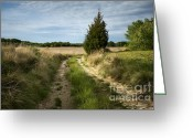 Old Country Roads Greeting Cards - Country Road Greeting Card by John Greim
