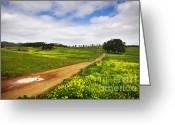 Puddle Photo Greeting Cards - Countryside landscape Greeting Card by Carlos Caetano