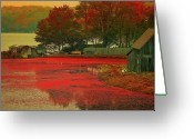 Cranberries Greeting Cards - Cranberry Farm Greeting Card by Gina Cormier