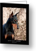 Dobe Greeting Cards - Elegant Greeting Card by Rita Kay Adams