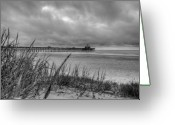 Beach Grass Greeting Cards - Folly Beach Pier Greeting Card by Dustin K Ryan