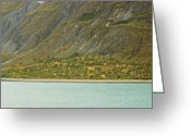 Quite Greeting Cards - Glacier Bay Tarr Inlet  Greeting Card by Michael Peychich