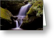Signature Greeting Cards - Grotto Falls Greeting Card by Robert Harmon