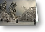 Snow Storm Greeting Cards - Heavy Laden Greeting Card by Lois Bryan