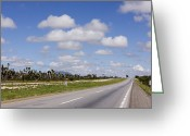 Yucca Plant Greeting Cards - Highway Greeting Card by Jeremy Woodhouse