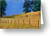 B.c Greeting Cards - Horses on the Hill Greeting Card by David  Naman