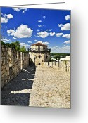 Mason Greeting Cards - Kalemegdan fortress in Belgrade Greeting Card by Elena Elisseeva