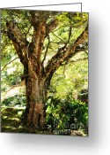Best Seller Greeting Cards - Kingdom of the Trees. Peradeniya Botanical Garden. Sri Lanka Greeting Card by Jenny Rainbow