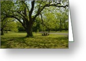 Park Benches Greeting Cards - Lake Murray Area Greeting Card by Iris Greenwell