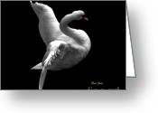 Seabirds Digital Art Greeting Cards - Majestic Swan 2 Greeting Card by Dale   Ford